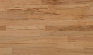 Apollo Solid Woods - Rustic Beech