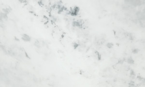 Minerva Solid Surface - Carrara White
